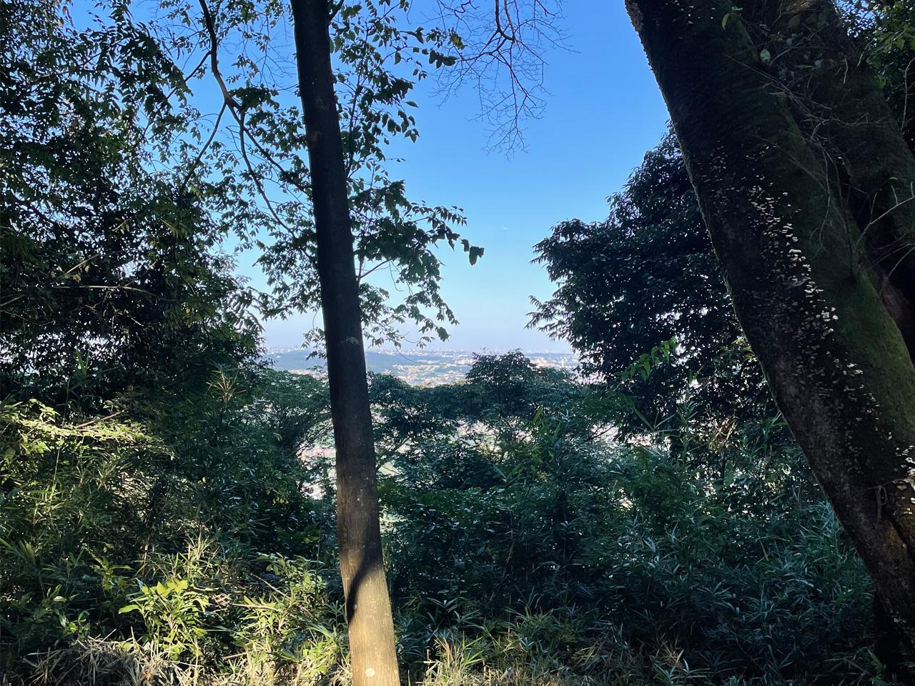 津久井城山の頂上付近の眺め