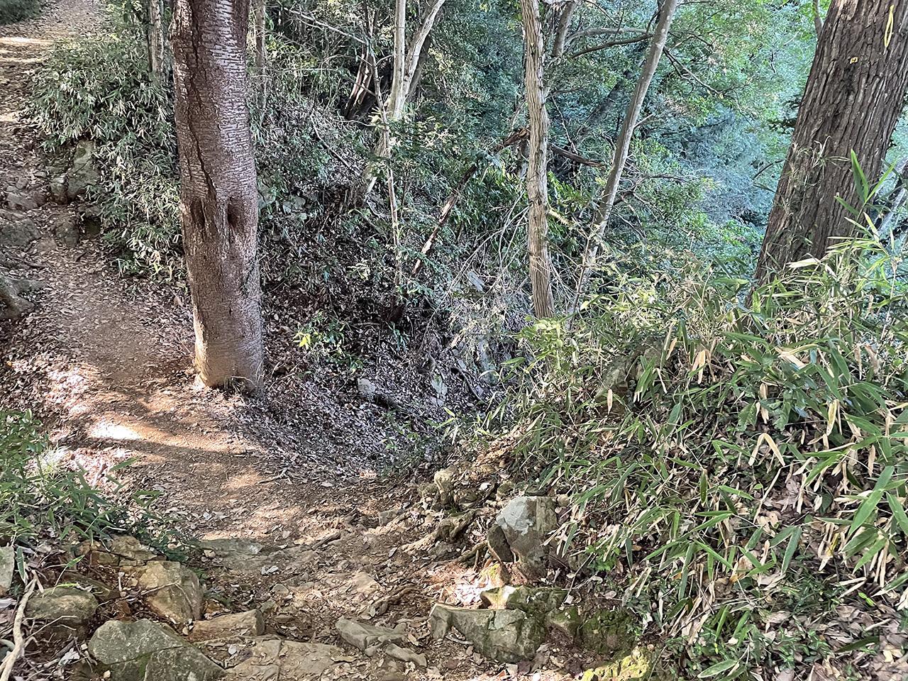 津久井城山の山道