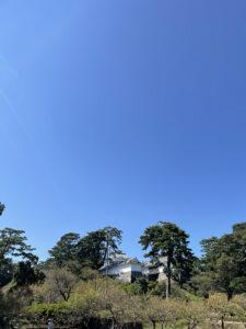 小田原城二の丸から見た天守閣