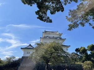 小田原城常磐木門付近から見た天守閣