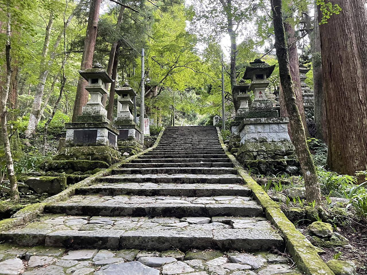 最乗寺の本堂前の石段