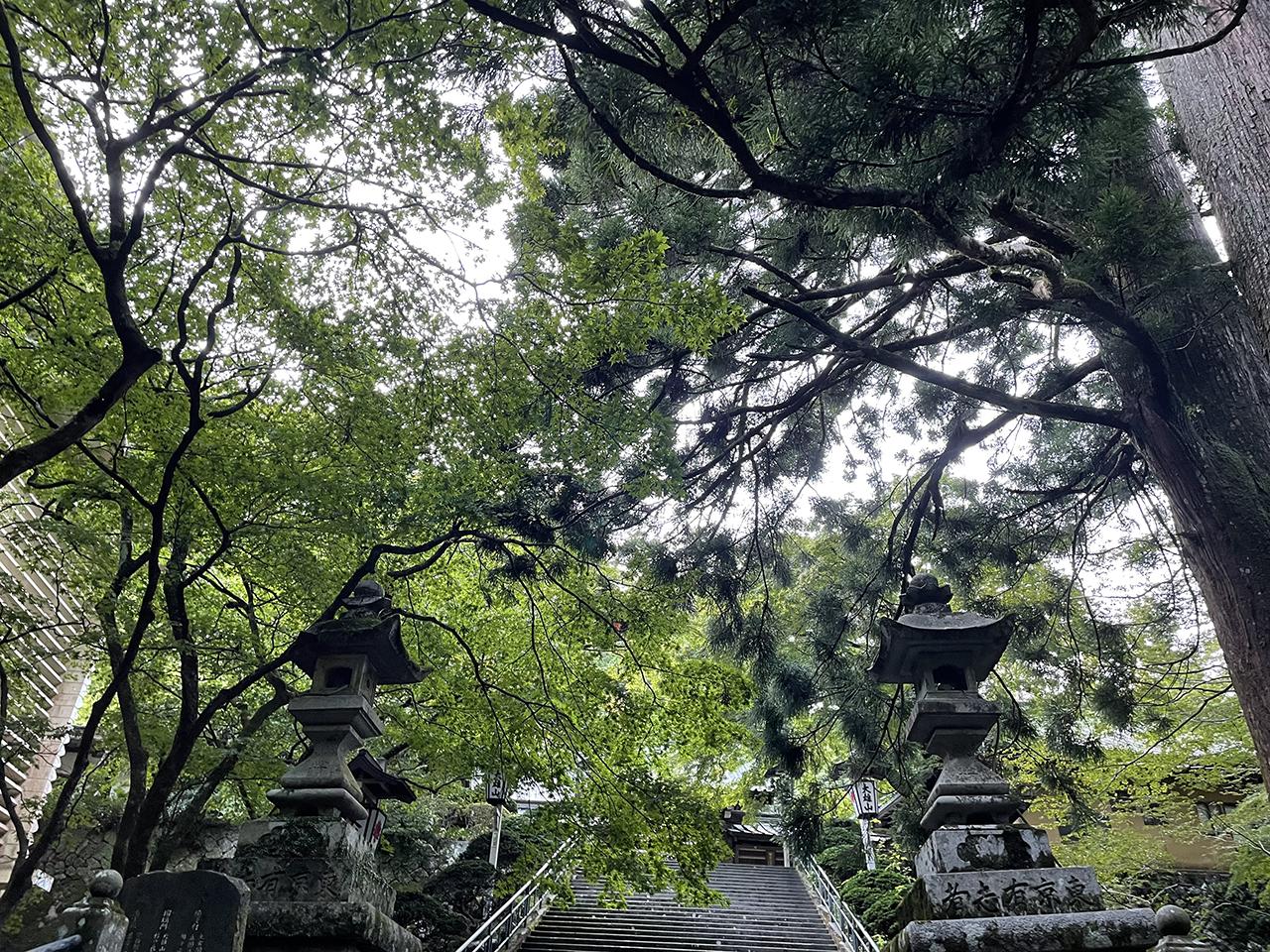 最乗寺瑠璃門前の階段