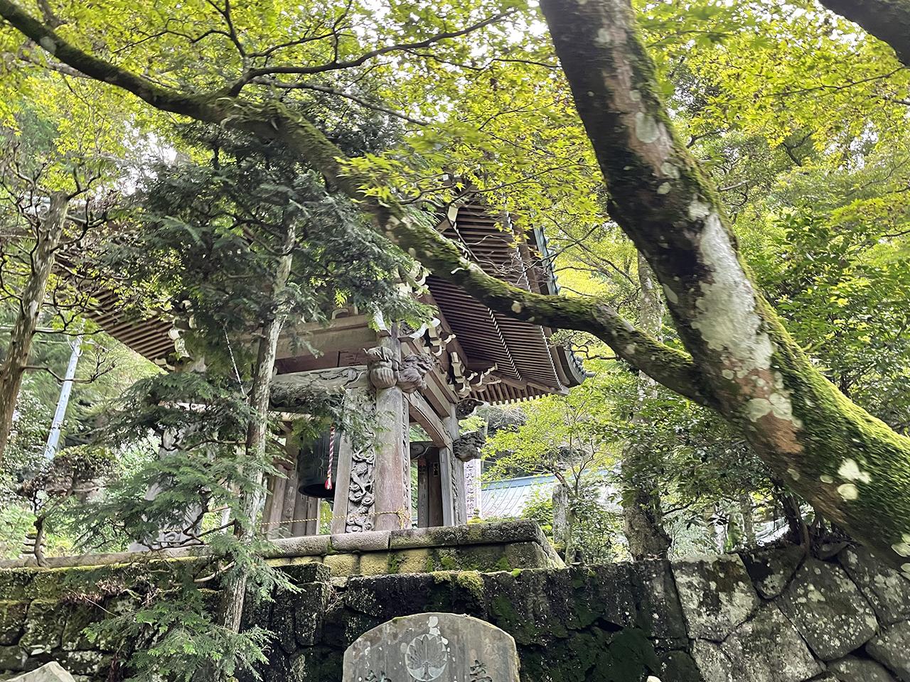 最乗寺の鐘桜